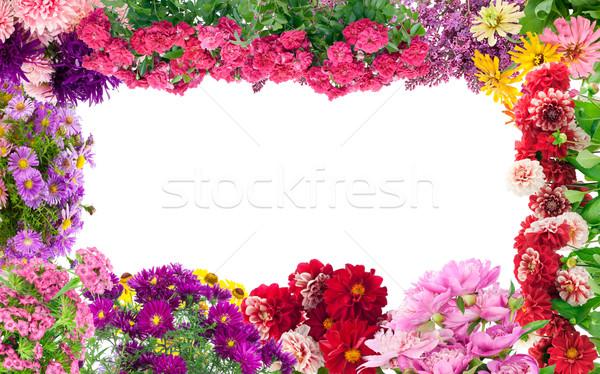 幻想的な 花 フレーム 季節の 夏の花 コラージュ ストックフォト © vavlt