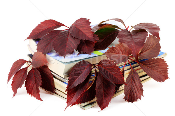 Magazines with red autumn grapes leaves Stock photo © vavlt
