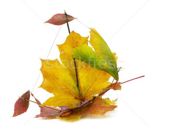 Outono sempre brinquedo crianças navio bordo Foto stock © vavlt