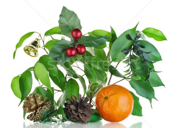 Christmas boeket mandarijn geïsoleerd witte groene Stockfoto © vavlt