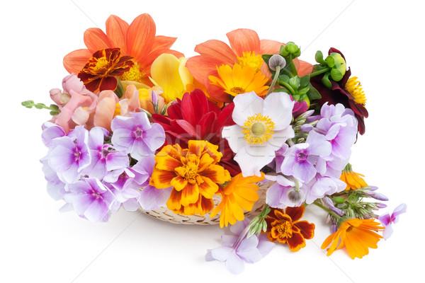 подарок влюбленный уникальный фантастический девушки растений Сток-фото © vavlt