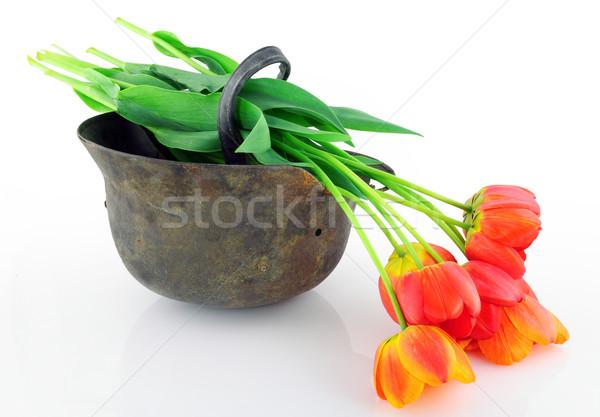 шлема цветы старые ржавые неизвестный солдата Сток-фото © vavlt