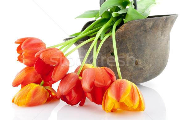 шлема красный тюльпаны старые ржавые неизвестный Сток-фото © vavlt
