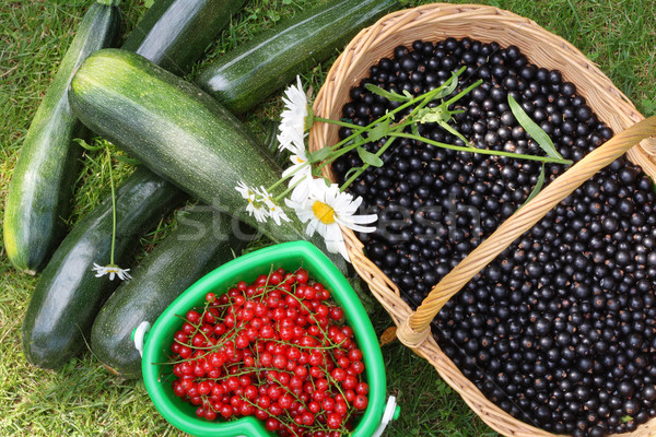 Baskets with berries Stock photo © vavlt
