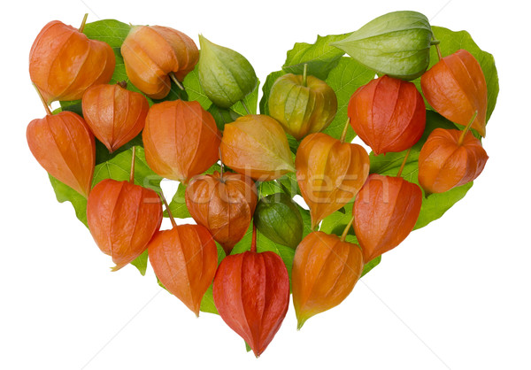 Heart from bright red   Chinese Lantern Stock photo © vavlt