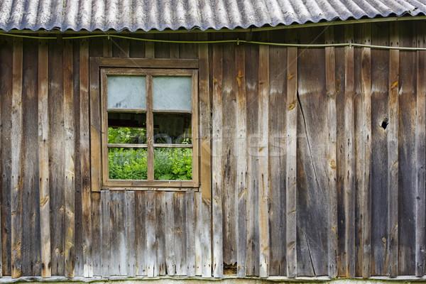Grama atrás janela grama verde parede Foto stock © vavlt