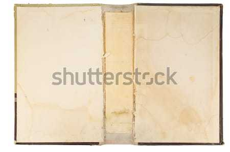 Old book cover texture Stock photo © vavlt