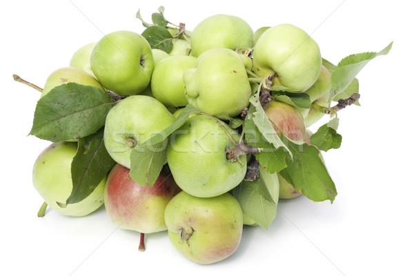 Halom zöld almák fanyar levelek izolált Stock fotó © vavlt