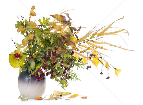 Sonbahar buket sürahi kırmızı sarı bitkiler Stok fotoğraf © vavlt