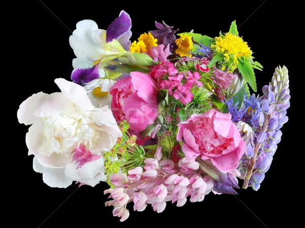 June flowers on black Stock photo © vavlt