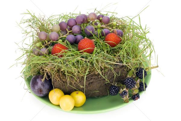 Fruitcake stuk gazon groene plaat gras Stockfoto © vavlt