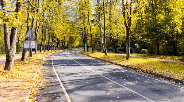 ősz út arany erdő út tájkép Stock fotó © vavlt