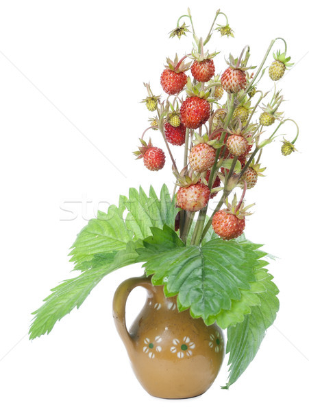 Wild strawberry in small ceramic jug Stock photo © vavlt