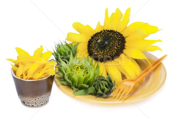 Sarı doğa diyet çiçekler plaka yaz Stok fotoğraf © vavlt