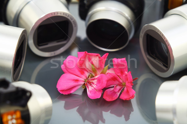 Flower and objectives of photo cameras Stock photo © vavlt