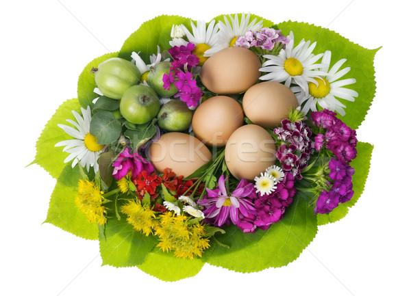 Húsvét fészek elöl kilátás egyszerű tyúk Stock fotó © vavlt