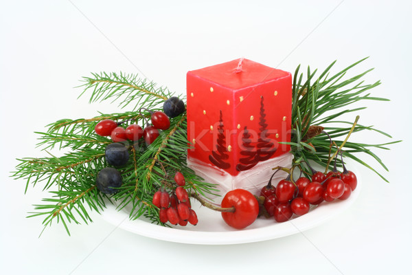 Christmas composition with wood berries Stock photo © vavlt