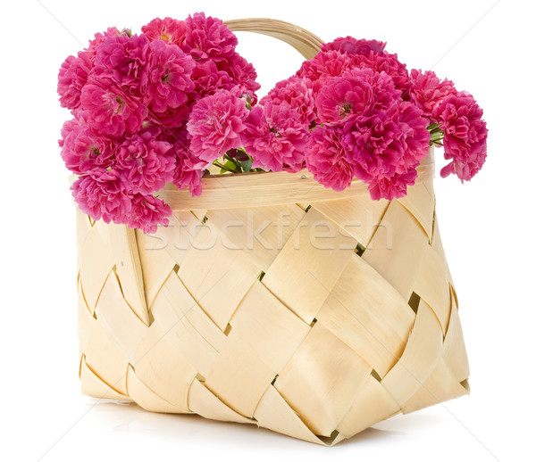 basket with pink roses Stock photo © vavlt