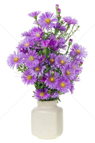 Minimalista virágcsokor mini magenta virágok szám Stock fotó © vavlt