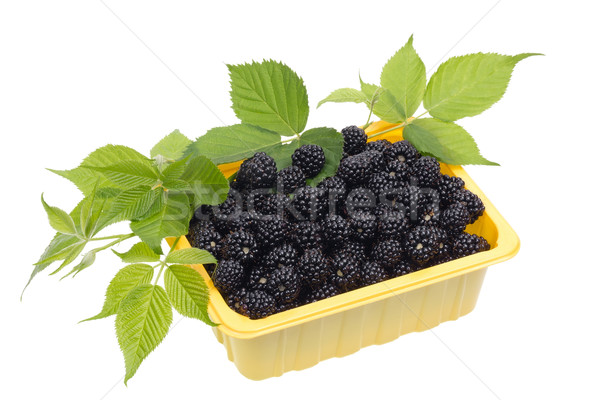 blackberries in a yellow plastic container Stock photo © vavlt