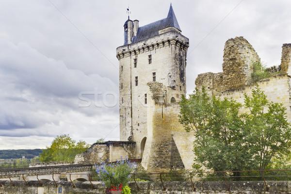 Old ruined castle Stock photo © vavlt