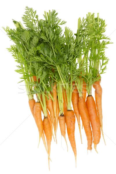 Wiejski ekologiczny brzydkie marchew brudne dorosły Zdjęcia stock © vavlt