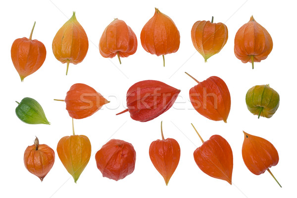 Red Chinese lanterns as design elements set Stock photo © vavlt
