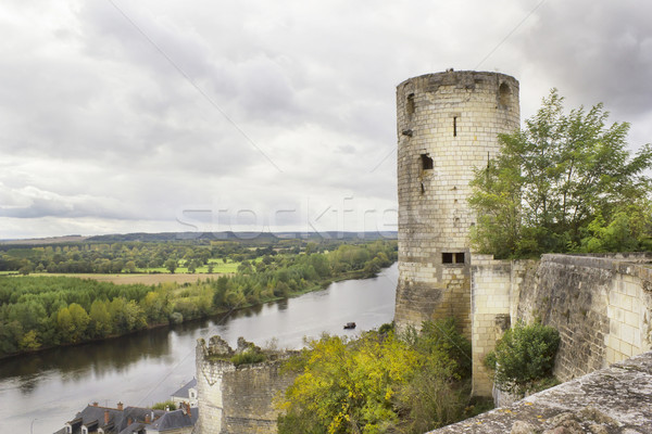 Old ruined castle Stock photo © vavlt