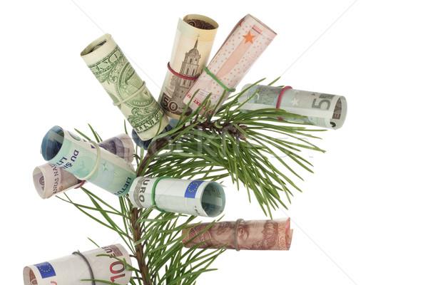 Monetary tree Stock photo © vavlt