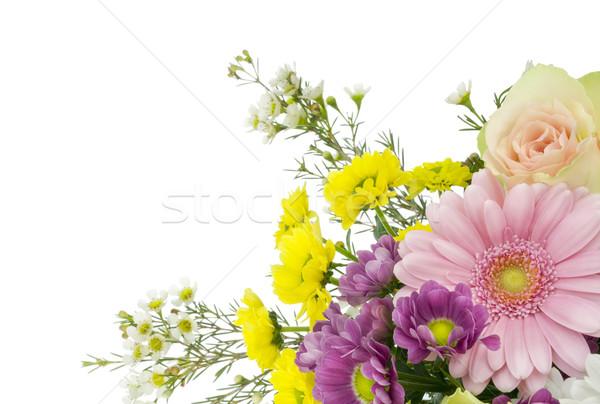 Virágok nők izolált erős művészet szelektív fókusz Stock fotó © vavlt