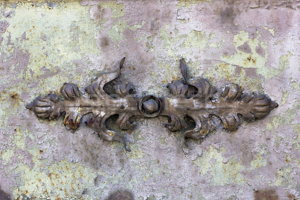 Decorative  iron rusty  leaves  Stock photo © vavlt