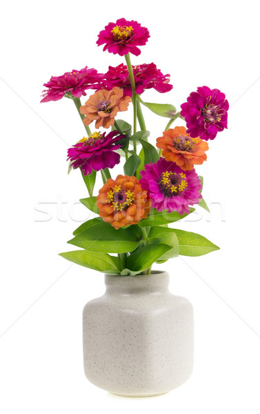 букет мини пурпурный цветы числа Сток-фото © vavlt