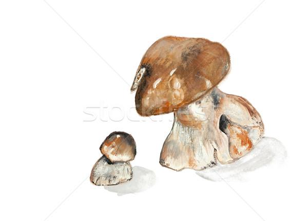 Gombák ehető fa nagy kicsi kézzel készített Stock fotó © vavlt