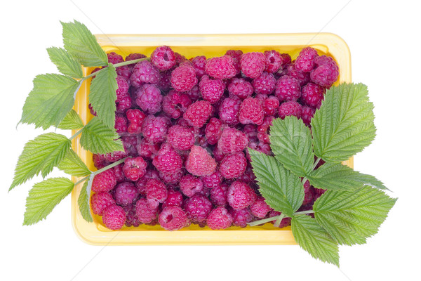 real summer raspberries  Stock photo © vavlt