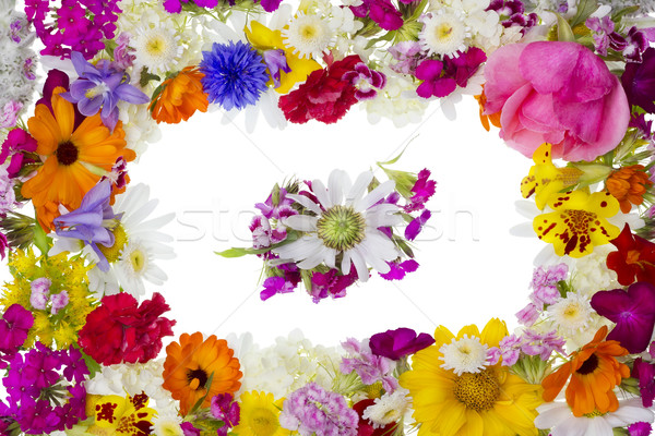 Stock photo: Floral picture pfoto frame
