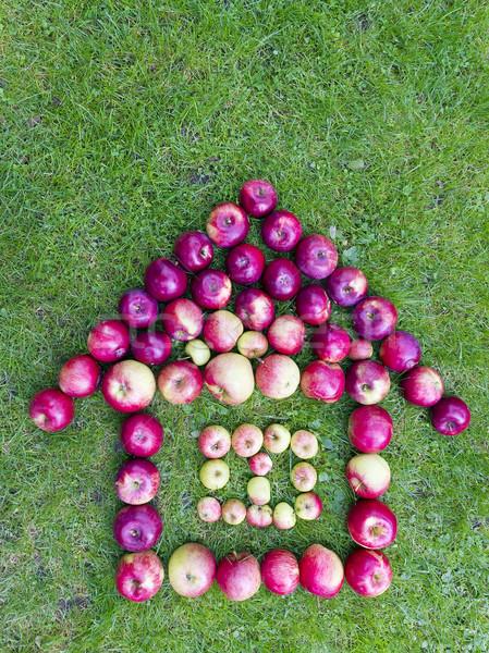 Zöld otthon házi igazi rusztikus almák Stock fotó © vavlt