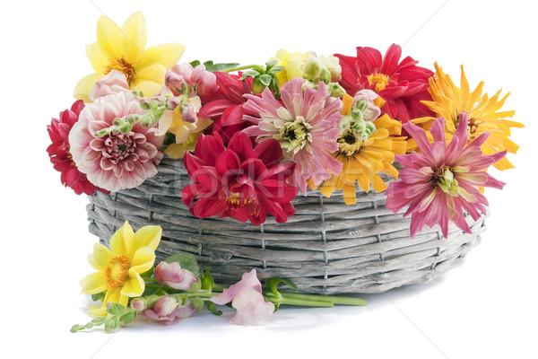 Európai virágok kosár kert barátnő izolált Stock fotó © vavlt