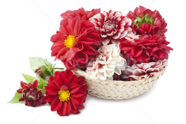 Kırmızı sepet avrupa çiçekler doğa yaprak Stok fotoğraf © vavlt