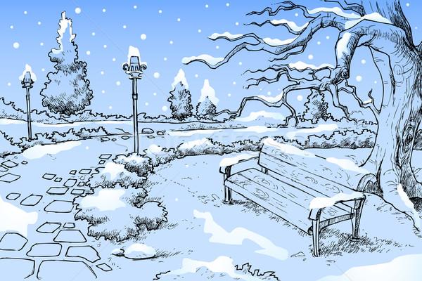Saison d'hiver illustration vue parc ciel arbre Photo stock © vectomart