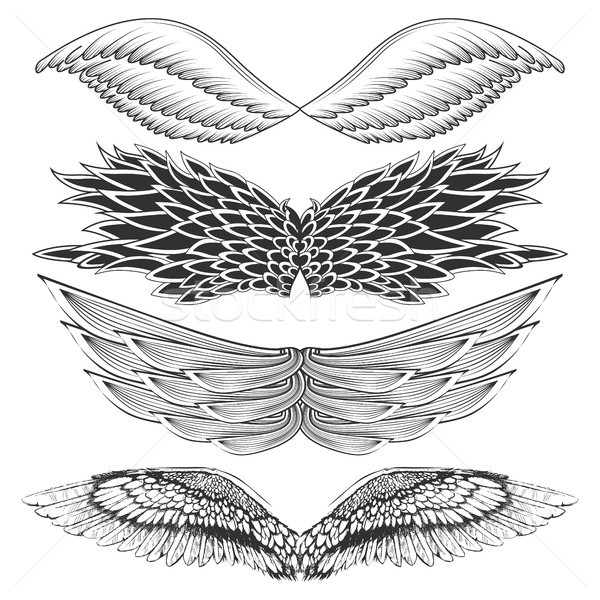 Tattoo art design of different gothic wing Stock photo © vectomart