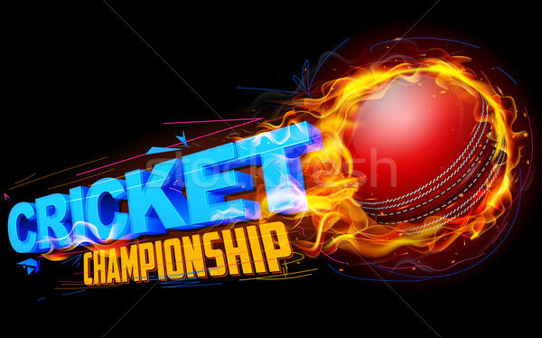 Feu cricket balle illustration championnat feu Photo stock © vectomart