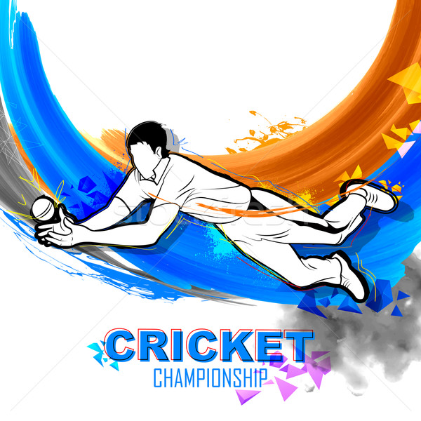 Player fielding in cricket championship Stock photo © vectomart
