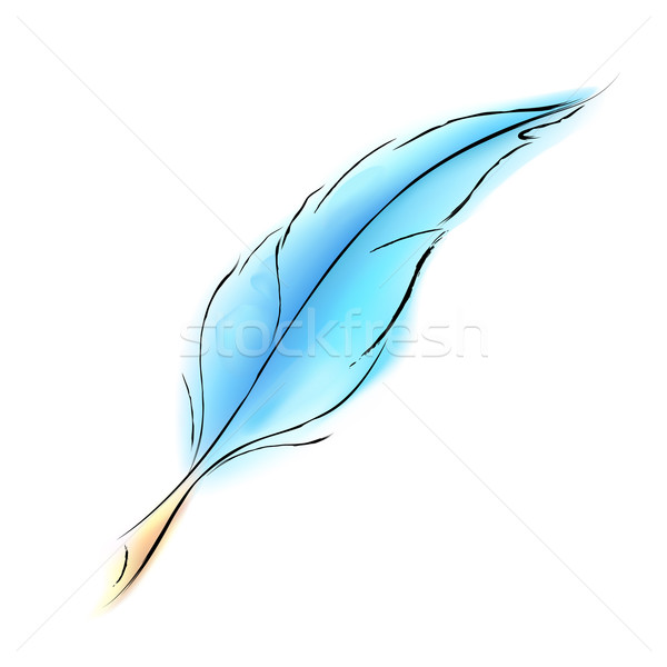 Soft Feather Stock photo © vectomart