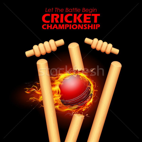 Fiery ball breaking the stumps for Cricket Stock photo © vectomart