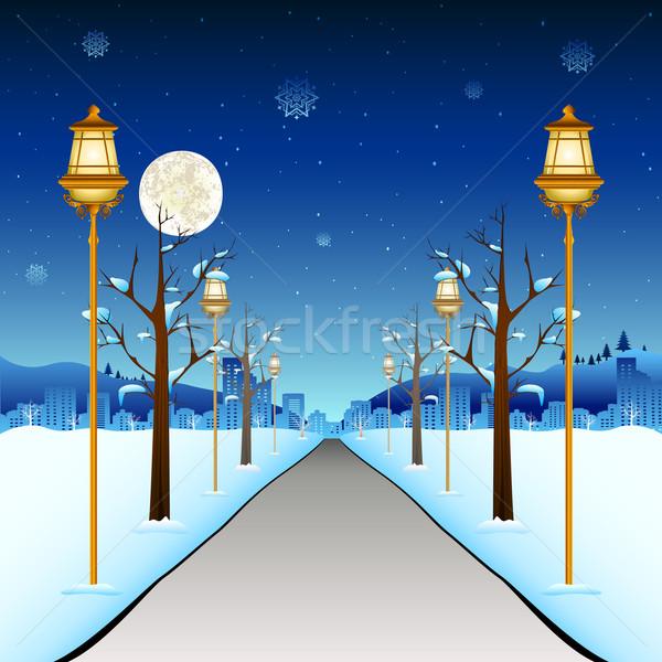 Winter Street Stock photo © vectomart