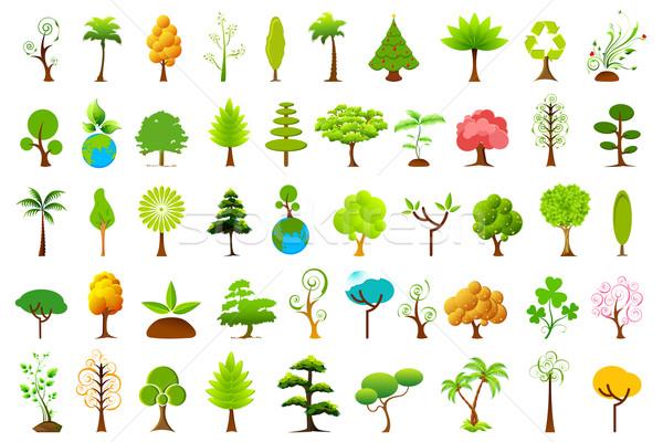 Different Tree Stock photo © vectomart