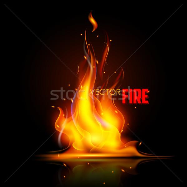 Realistyczny palenie ognia płomień ilustracja czarny Zdjęcia stock © vectomart