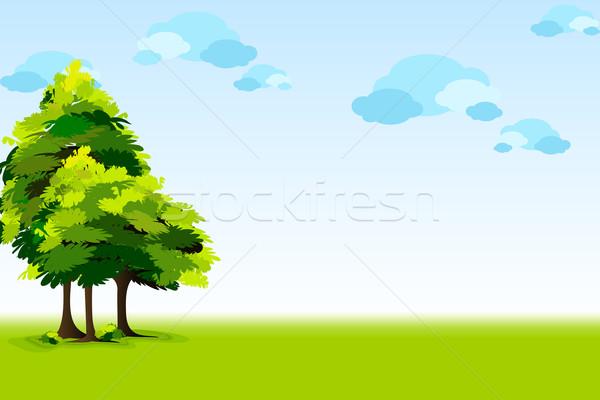 Beautyful Landscape Stock photo © vectomart