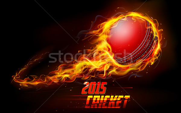 Vurig cricket bal illustratie abstract brand Stockfoto © vectomart