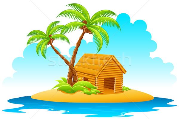 Cabaña isla ilustración casa palmera Foto stock © vectomart